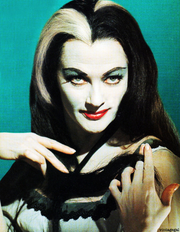 Countdown to Halloween, Day Ten: Pictures of Lily (Munster, That ...