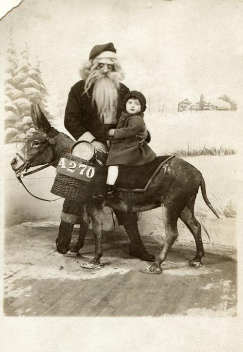 Evil Santa Donkey