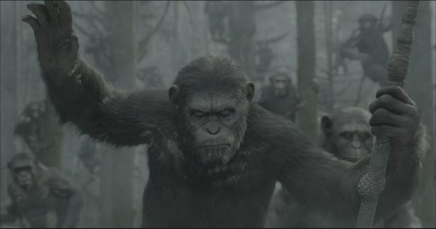 click to ape-biggen