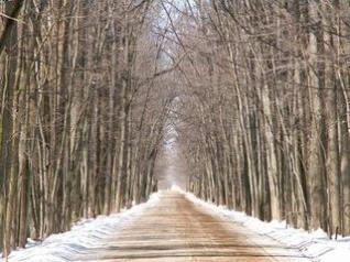 Morrow-Road-Haunting